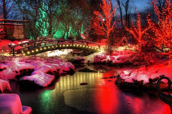 creation museum christmas lights creation museum christmas lights - Beautiful Christmas Lights