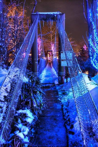 Creation Museum Christmas Lights