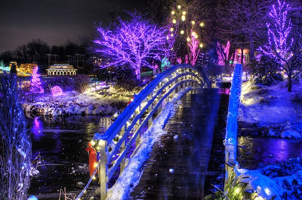 Creation Museum Christmas Lights