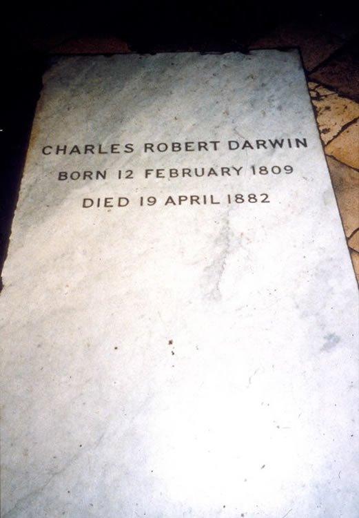 Charles Darwin Tombstone
