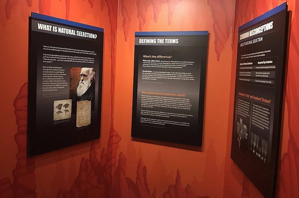 Darwin Exhibit