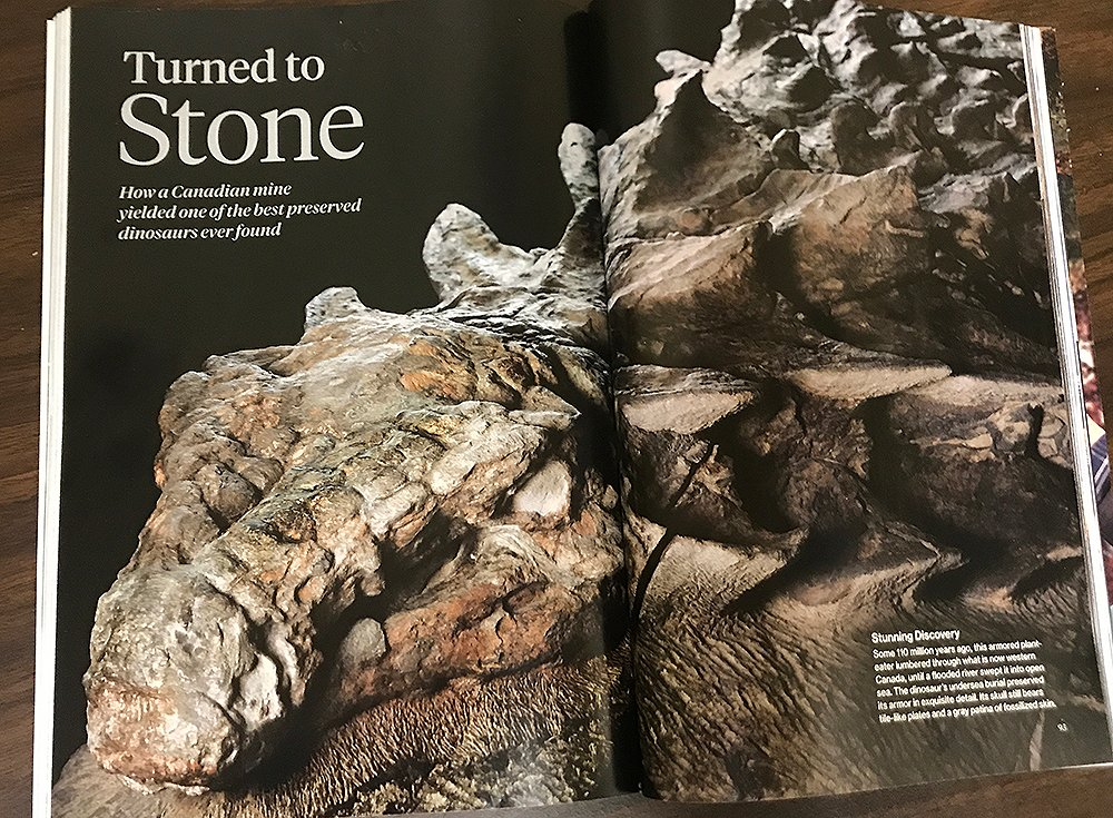 Nodosaur Magazine Spread