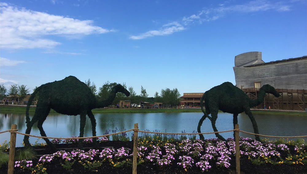 Topiary Camels