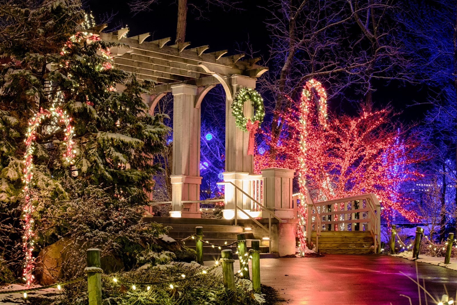 ChristmasTown Lights at the Creation Museum