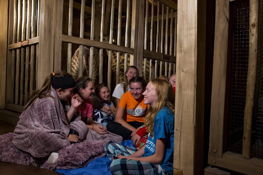 Girls Talking During an Overnight Stay on the Ark