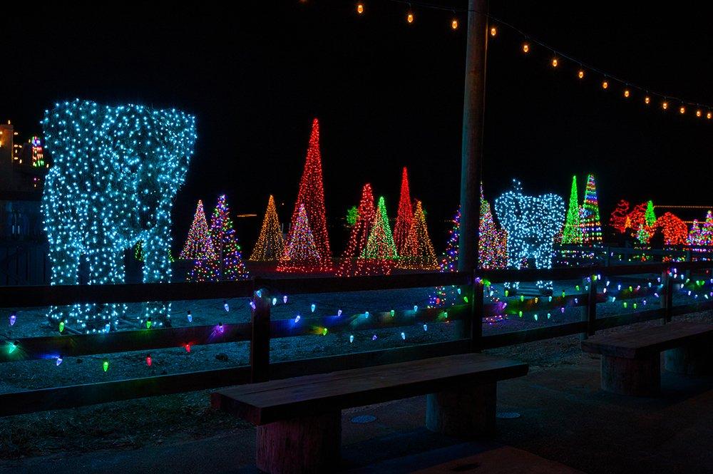 Christmas Time Lights