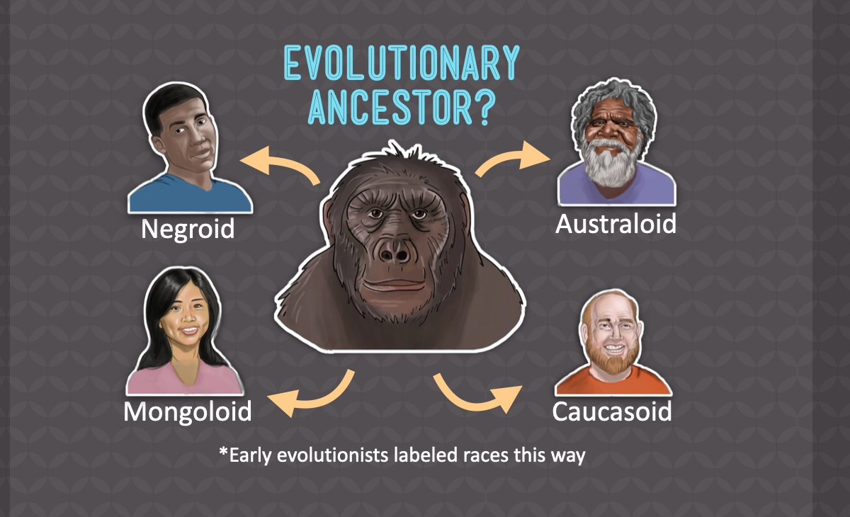 Evolutionary Ancestor