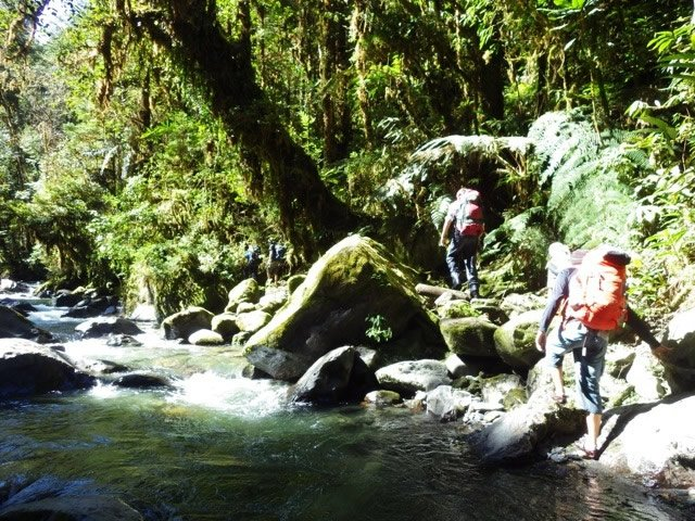 Hiking by stream
