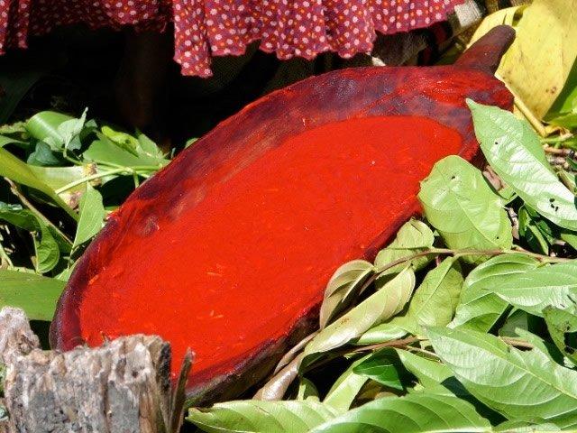 Red Fruit Juice