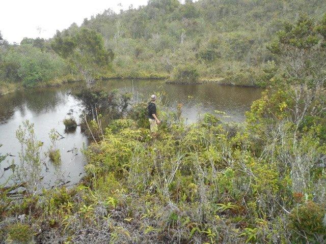 Hike to Pond