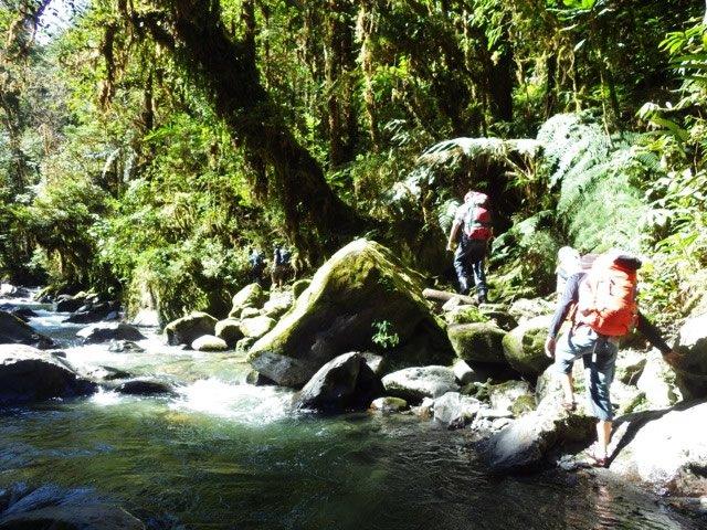 Hiking near Stream