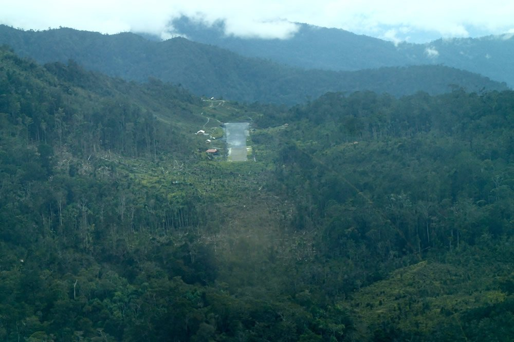 Jungle Landing Strip