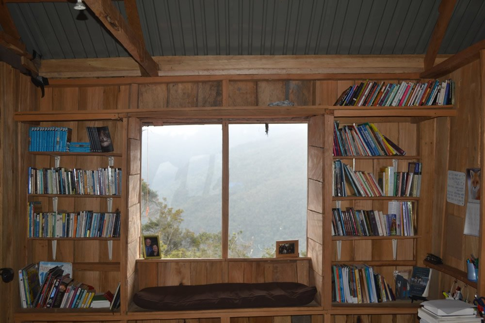 Wild Family Bookshelves