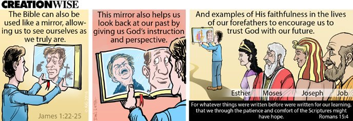 Creation Wise 2016: The Bible Is a Mirror