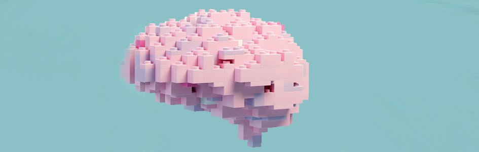 Brain Made of Legos