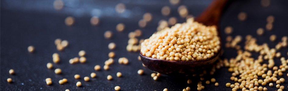 Mustard Seeds in Spoon