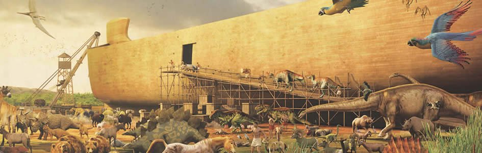Determining the Ark Kinds
