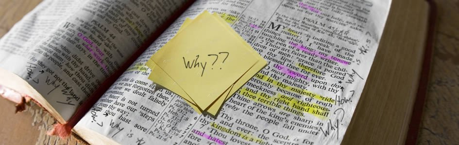 essay questions on the bible