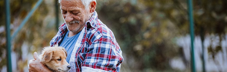 "Governor Wants California to Be ""A No-Kill State""—But Only for Animals"