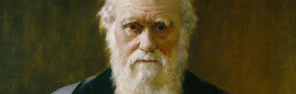 Darwin Still Debating the Creationists