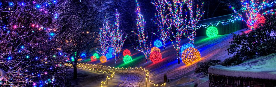 Experience the Live Nativity and Lights at the Creation Museum's Christmas Town