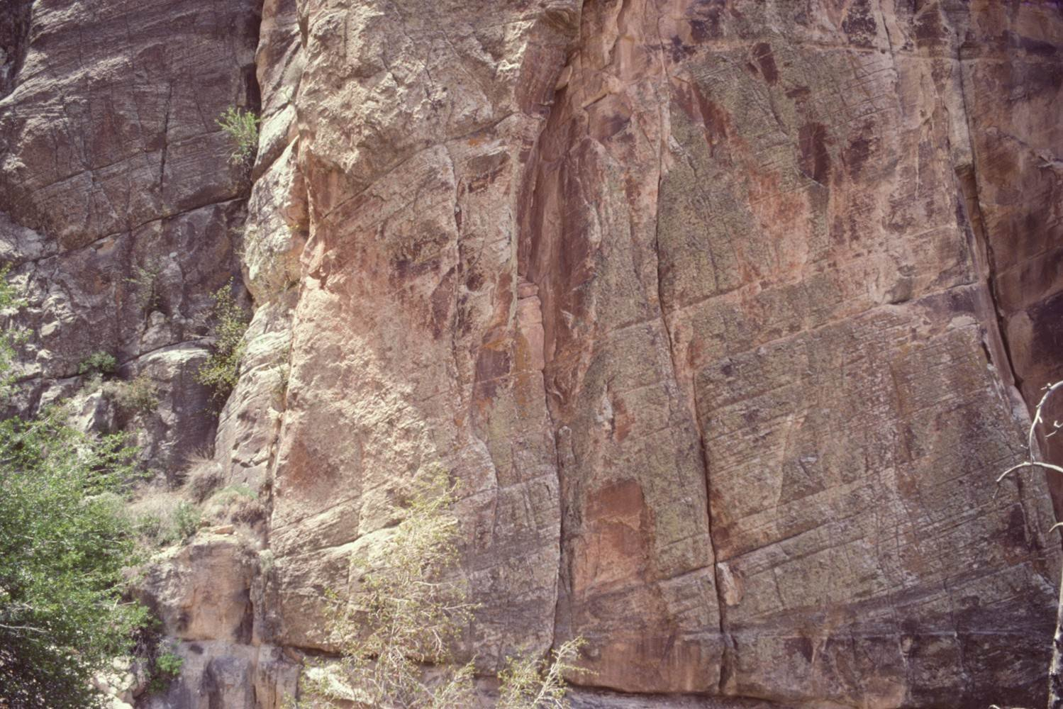 The Petrology of the Coconino Sandstone (Permian), Arizona, USA