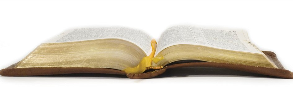 Contradictions in the Bible?