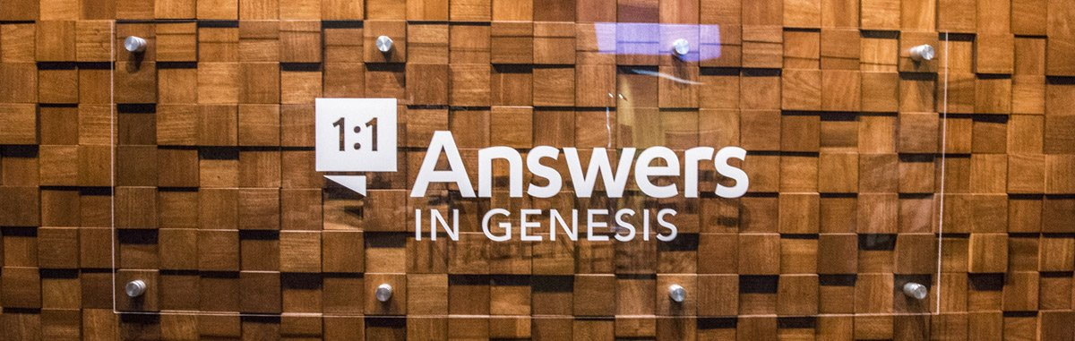 Answers Bible Curriculum For Sunday School And More