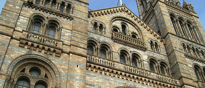 London´s Natural History Museum (UK)