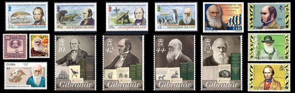 Darwin Stamps