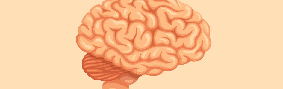 Did Our Brains Evolve Slower Than Society?