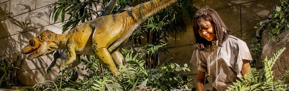 Why don't we find dinosaurs and humans together in the fossil record?