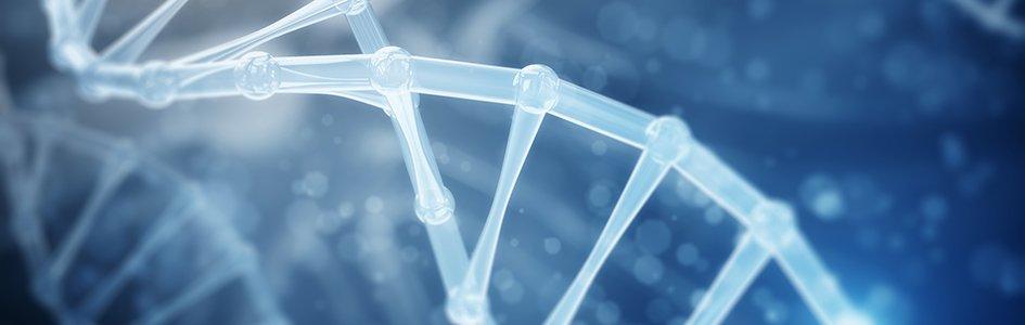 "DNA—An ""Energy Code""?"