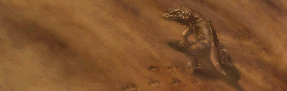 Fossil Footprints—Found Millions of Years Before the Creatures Who Made Them?