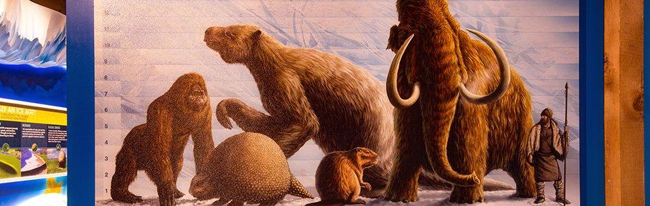 Why Were Ice Age Animals So Big?