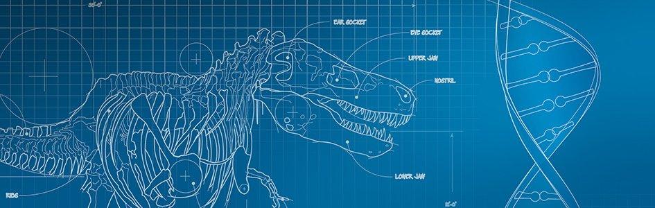 Dinosaur and DNA Blueprint