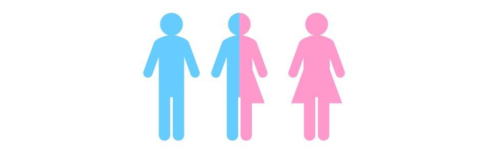 Transgender Gender Graphic