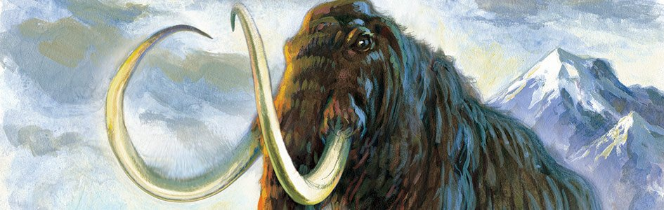 Mammoth Undertaking