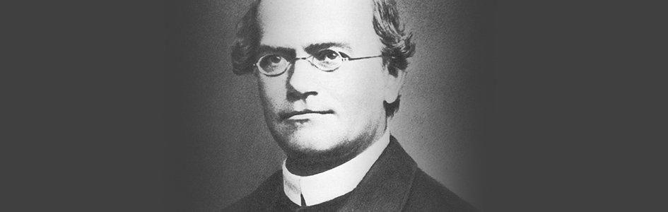 Gregor Mendel: No Darwinian