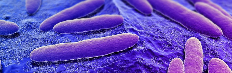 Disinfectants Train Microbes