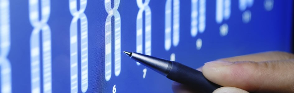 "Geneticists Duel Over Dates for ""Y-Chromosomal Adam"""