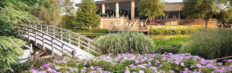 Explore the Creation Museum's Stunning Botanical Gardens from Your Own Home!