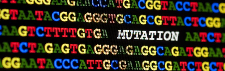 2.8 Mutation-Selection in Biblical Perspective