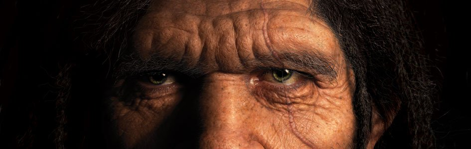 Can Neanderthal Noses Sniff Out the Secret Paths of Human Evolution?