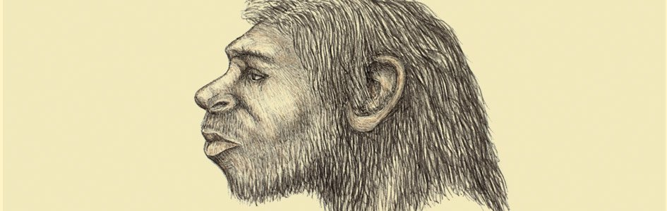 Is Homo naledi a New Species of Human Ancestor?