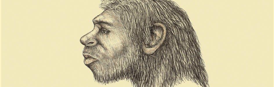 Homo naledi - Magazine cover