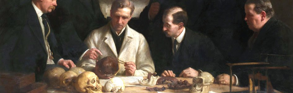 Fraud and Forgery in Paleoanthropology