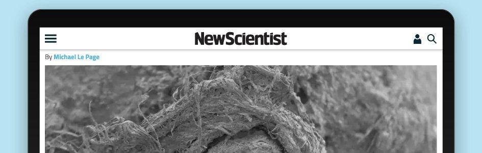 Study: Neanderthals Made String