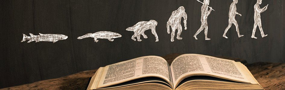 When Evolutionists Help Creationists Make Their Case