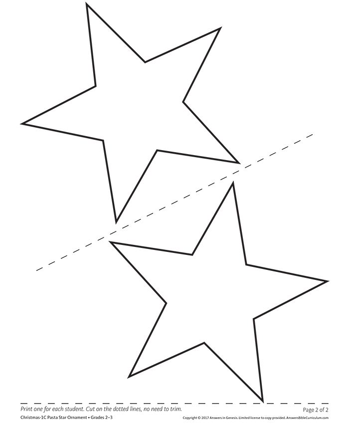 Pasta Star Ornament